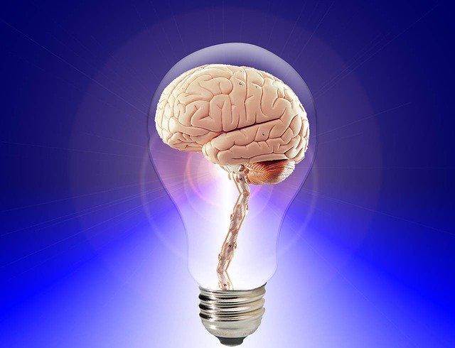 la mémoire et la capacité de mémorisation est liée aux réflexes archaïques-(Crémieu-Bourgoin-jallieu)